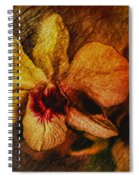 Mood Of The Orchid Spiral Notebook
