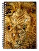 Moods Of Africa - Lions 2 Spiral Notebook