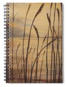 Moody Sunset Spiral Notebook