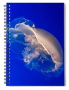 Moon Jelly Series #3 Spiral Notebook