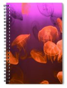 Moon Jellyfish - Red And Purple Spiral Notebook