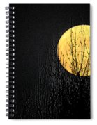 Moon Over The Trees Spiral Notebook