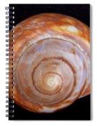 Moon Shell Spiral Notebook