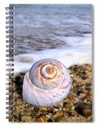 Moon Snail Spiral Notebook