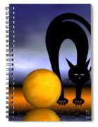 Mooncat's Play With The Fullmoon Spiral Notebook