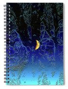 Moondance Spiral Notebook