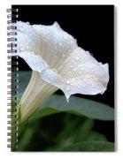 Moonflower - Rain Drops Spiral Notebook