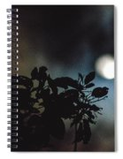 Moonlight And Tree 2 Spiral Notebook