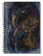 Moonlight Dancer Spiral Notebook