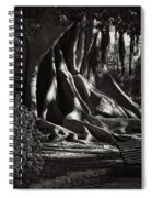 Moonlight In The Park - Valencia Spiral Notebook