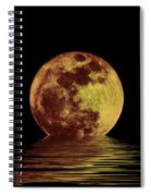 Moonlight On The Bay Spiral Notebook