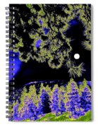 Moonlit High Country Spiral Notebook