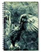 Moonlit Owl Spiral Notebook