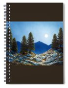 Moonlit Trail Spiral Notebook