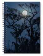 Moonrise Over Wetlands Spiral Notebook