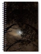 Moonshine 14 The Trees Spiral Notebook