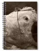 Moooo Spiral Notebook