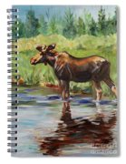 Moose At Henry's Fork Spiral Notebook