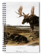 Moose Deer (cervus Alces) Spiral Notebook