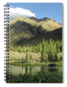 Moose In The Elk Creek Beaver Ponds Spiral Notebook
