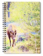 Moose In The Yard Spiral Notebook