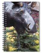 Moose In Vail Spiral Notebook