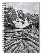 Moraine Lake Driftwood No 1 Spiral Notebook