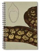 Moray Eel Spiral Notebook