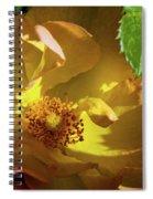 Morden Sunrise 2 Spiral Notebook