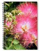 More Mimosa Spiral Notebook
