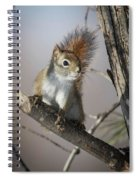 More Seeds Please Spiral Notebook