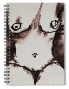 More Than Series No. 1381 Spiral Notebook