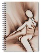 More Than Series No. 2315  Spiral Notebook