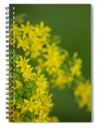 More Yellow Spiral Notebook