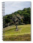 Morgan Territory Oak Spiral Notebook