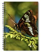 Mormon Metalmark Spiral Notebook