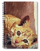 Morning Cat Spiral Notebook