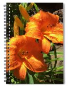 Morning Daylilies Spiral Notebook