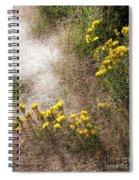 Morning Dew At Pendleton Park Spiral Notebook