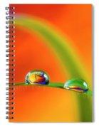 Morning Dewdrops Spiral Notebook