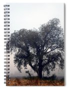 Morning Fog - The Delta Spiral Notebook