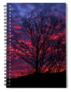 Morning Glory 1 Spiral Notebook