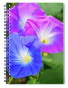 Morning Glory Spiral Notebook