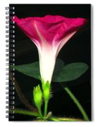 Morning Glory Stand Up Spiral Notebook