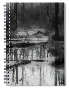 Morning In The Swamp Spiral Notebook