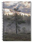Morning Light At Saari-soljonen 7 Spiral Notebook
