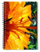 Morning Lily Spiral Notebook