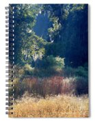 Morning Marsh Sunshine Spiral Notebook