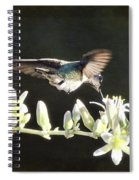Morning Nectar Flyby  Spiral Notebook