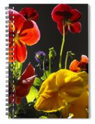 Morning Pansy's  Spiral Notebook